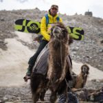 Splitboard expedition Mongolia - With a splitboard on a camel - Pic: Mirte van Dijk