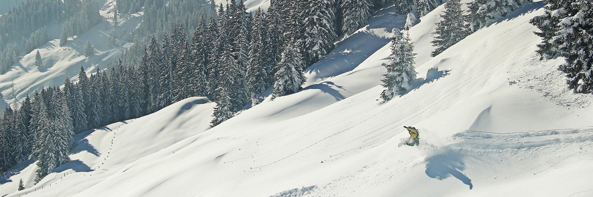 Stephan Verheij deep powder. (Pic: Roy Mosterd)