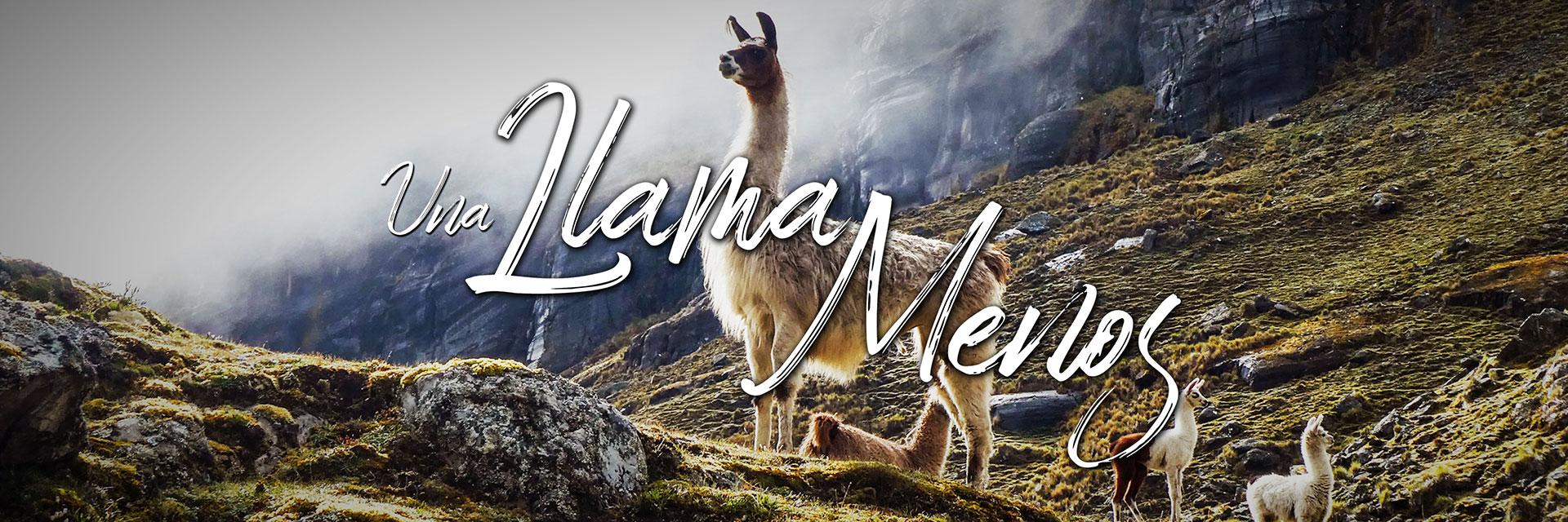 Una Llama Menos - A rider's journal in Bolivia
