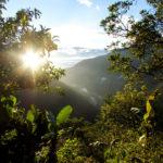 Jungle trekking El Choro, Bolivia - Pic: Stephan Verheij